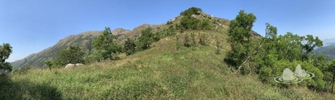 伯公坳>南大嶼郊遊徑>青龍脊>二東山>天池>大東山>鳳凰徑第2段>伯公坳