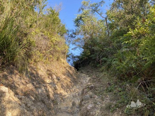 白沙澳>南山洞>荔枝莊>荔枝莊地質步道>雞麻峒>白沙澳