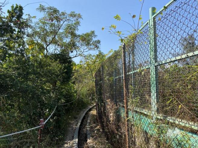 利安道>新清水灣道>晨運徑>佐敦谷公園>利安道