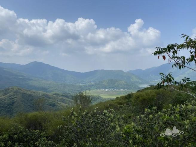 Hiking 4.10.2020 Fung Hang (22)
