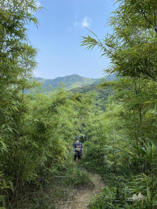 Hiking 4.10.2020 Fung Hang (32)