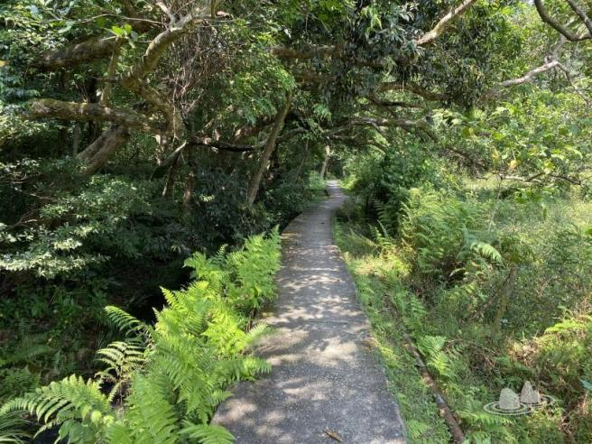Hiking 4.10.2020 Fung Hang (51)