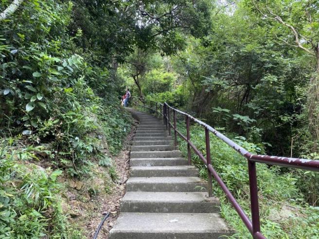 Hiking 4.10.2020 Fung Hang (71)