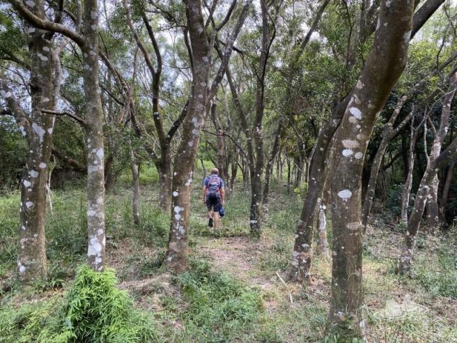 Hiking 4.10.2020 Fung Hang (74)