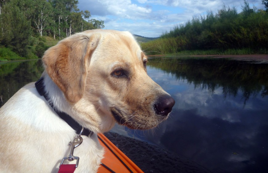 Jess-on-the-river
