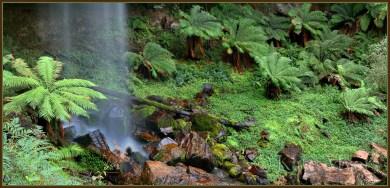 Bindaree-Falls