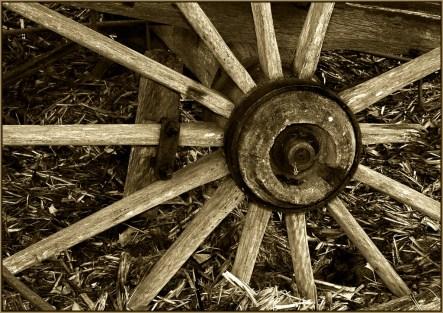 Cart-Wheel