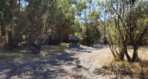 Bingara Camping area 5