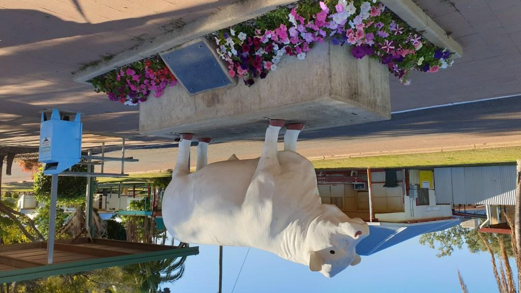 Lake Dunn Sculptures