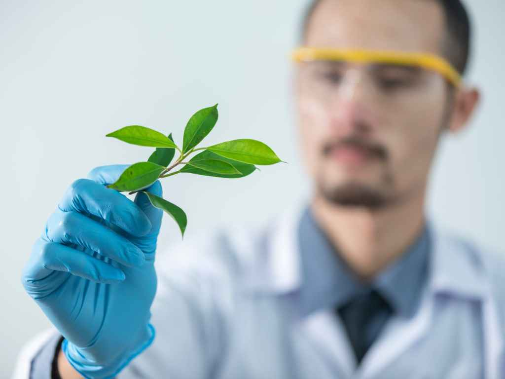 Scientist with plant based ingredients