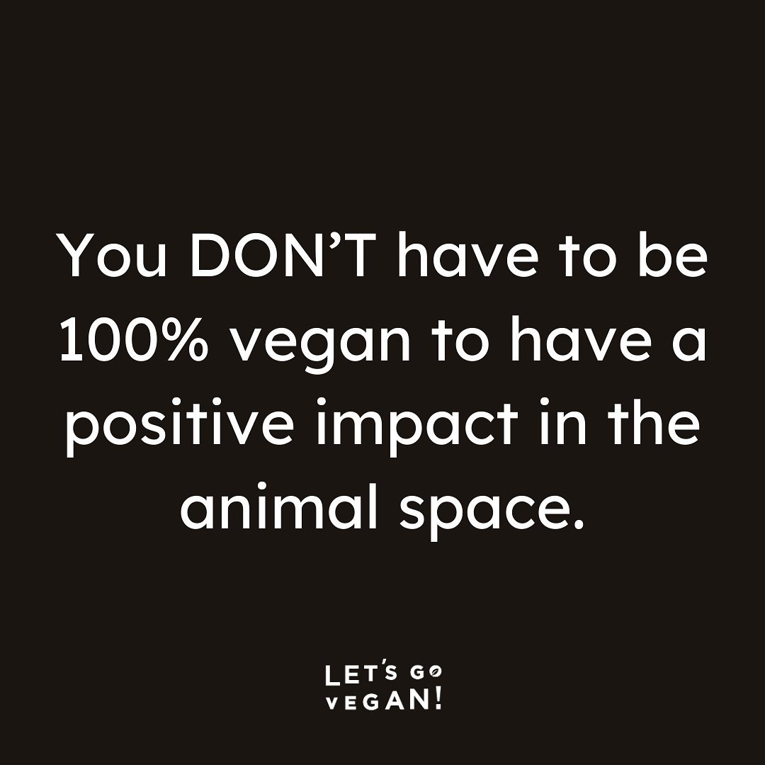 Talking to people about veganism