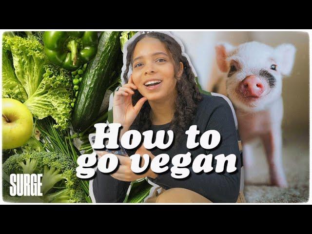 Earthling Ed's tips for going vegan