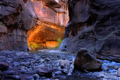 Narrows | Zion National Park