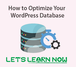 How to Optimize Your WordPress Database