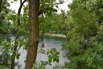 Crow Creek - The quarry is beutiful through the trees.