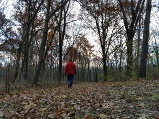 Cedar Valley Park has beautiful, open trails.