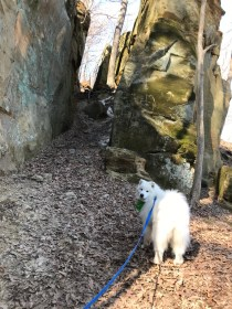 Kaia checking out the trail through the rocks at Wildcat Den Park