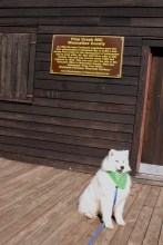 Kaia sitting outside the door to the Pine Creek Mill