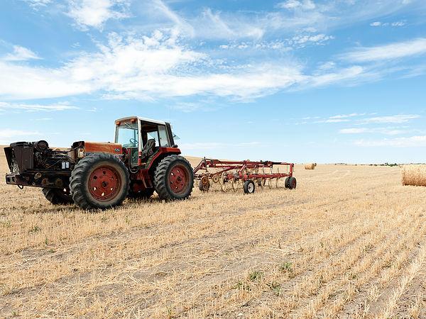 (圖片說明/大規模機械化生產的農田。 )