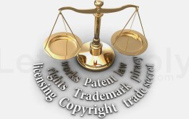 Is India Undermining Intellectual Property Rights | IPR India