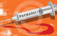 Law on Euthanasia in India: Steady or Still Evolving?