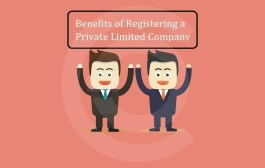 Benefits Of Private Limited Company Registration In India