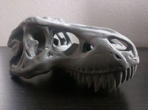 Cetus3D T-Rex Skull