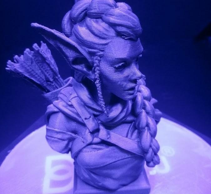 BIQU Magician Elf Archer Print