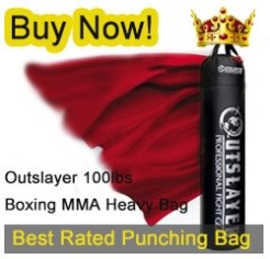 best heavy punching bag review