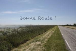 petite_route_camargue_1