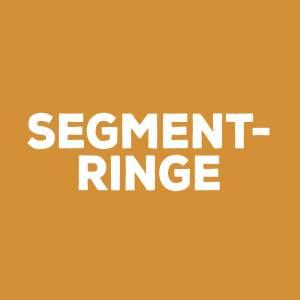 Segmentringe