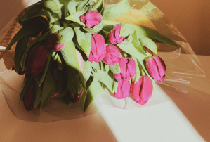 8 Flowers To Channel Your Feminine Energies
