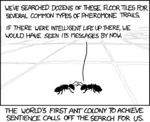 ants_the_search
