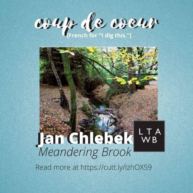 Jan Chlebek art for sale