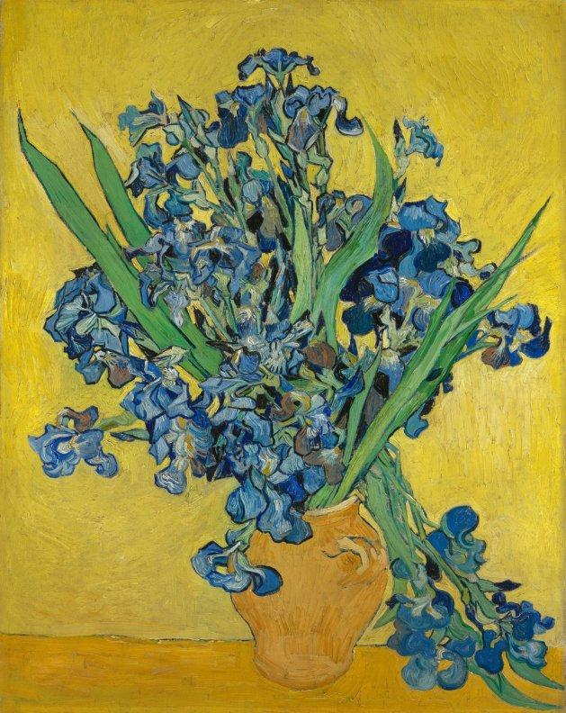 "Van Gogh, Irises, 1890, o/c, 36 1/2"" x 29 1/8"" (92.7 cm x l73.9 cm), Van Gogh Museum, Amsterdam, Photo: Metropolitan Museum of Art"