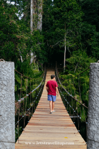 A man in a red shirt and blue pants walking over a wooden hang bridge in Khao Yai