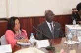 Centrafrique : Quand Mme Danièle Darlan convoque des partis politiques pour une audition