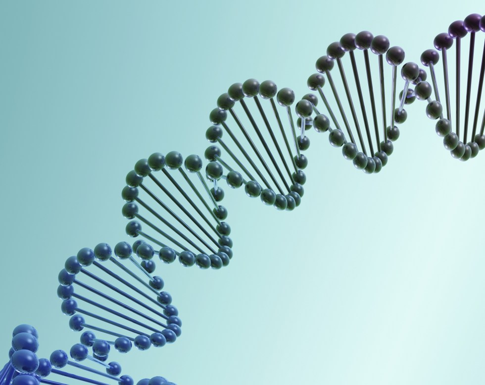 illustration of the DNA double helix in purple and dark gray on a turquoise background