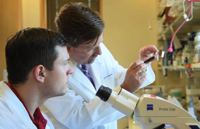 Dr. David Tuveson, right, looking at a slide in a laboratory, with a coworker at the microscope