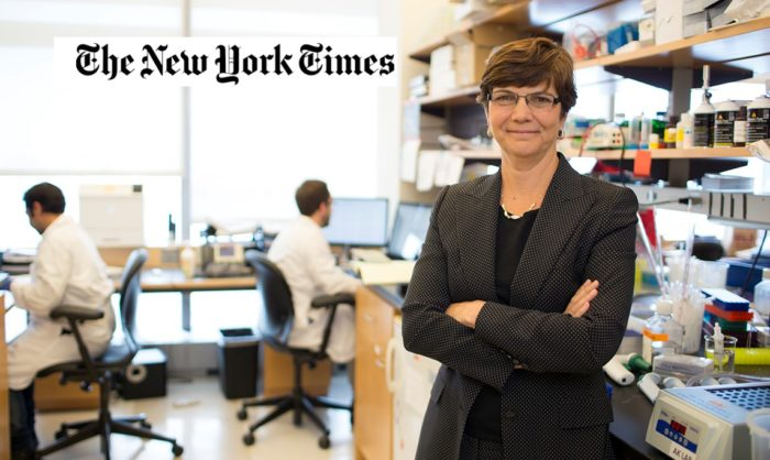Dr. Diane Simeone in the lab, with the New York Times logo