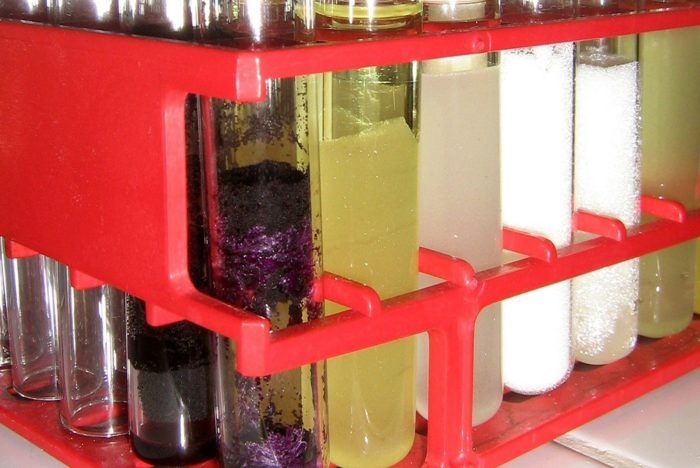 Chemistry tubes with purple, yellow and white liquids in a red rack