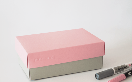BUNTBOX Farbkombination Zart: Platin + Flamingo