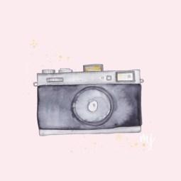 500-camera