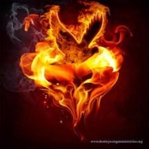 fire-doveheart