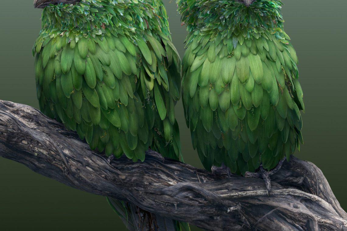Les animaux hybrides de Josh Dykgraaf