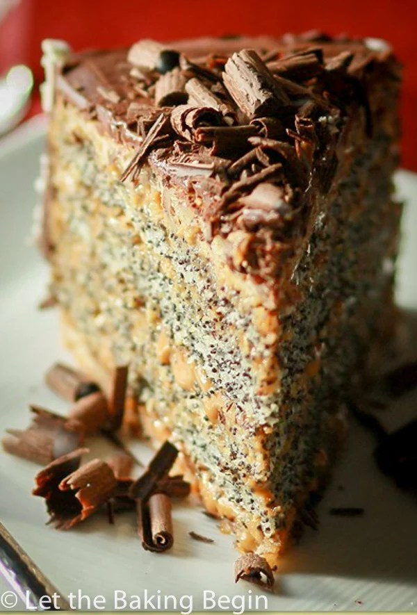 Front view of slice of poppy seed cake topped with chocolate cravings on a green plate.