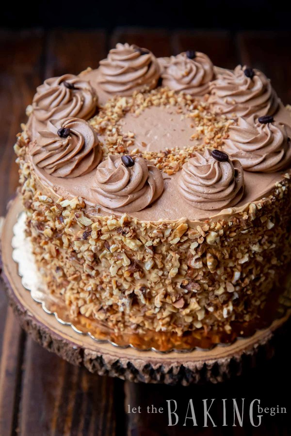 Walnut cake with a chocolate coffee icing piped on top. The sides of the cake are covered in chopped walnut pieces.