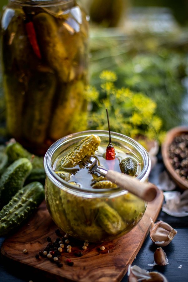 Fork stuck in a jar of pickles made from a dill pickle recipe.
