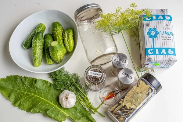 Dill pickle recipe ingredients