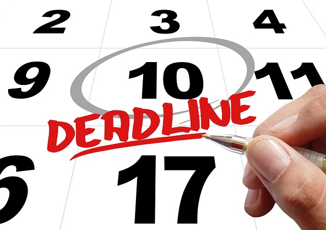 The Deadline (The Text)